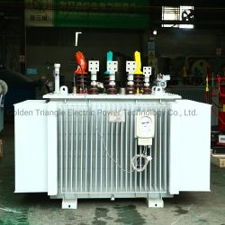 Transformador imersos em óleo (100-1600) kVA para o mercado russo, com acessórios