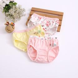 Les enfants étudiant sous-vêtements bébé fille Vêtements mémoires caleçons Vêtements