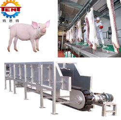 El sacrificio de cerdos de alta eficiencia Dehairing equipos para la casa de la Matanza