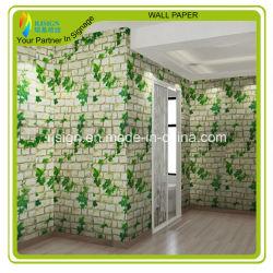 Bedruckbares Eco Ston Papier, bedruckbares Wand-Papier