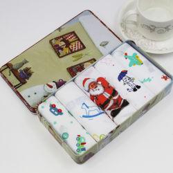 Weihnachtsgeschenk-Zinn-Kasten des Taschentuches und des Schals