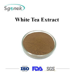 Het natuurlijke Organische CAS 84650-60-2 Witte Uittreksel van de Thee van de Grondstof van de Hoge Zuiverheid van het Poeder van het Uittreksel van de Thee Witte