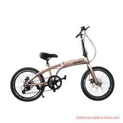 """Los niños de 20"""" bicicleta plegable bicicleta plegable 21 VELOCIDADES/rueda pequeña bicicleta plegable bicicleta plegable de acero/"""