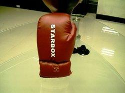 Sound-Gloves