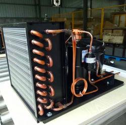 Piccolo mini tipo unità di condensazione del compressore di refrigerazione per mini cella frigorifera