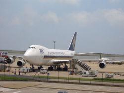 Trasporto internazionale mare/dell'aria & servizio di logistica (UPS Federal Express del DHL)