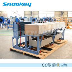 La Chine haut de page 1, type en aluminium de refroidissement direct gros bloc machine à glace