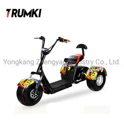 Autoped Met drie wielen van de Motorfiets van de Kwaliteit van China de Beste Elektrische Elektrische