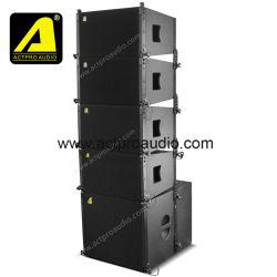 Berufsvollzeile Reihen-Lautsprecher-Neodym TW-Vera10 10 ''