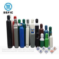 中国の製造業者の工場供給の小さいガスポンプのガスポンプの安全