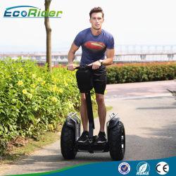 2 Ecorider 72V Samsung литиевую батарею на распределение нагрузки электрического поля для гольфа тележки, APP осуществляется по телефону