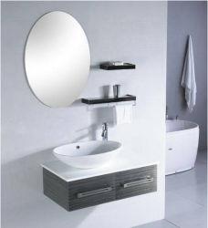 Vanità del Governo/bagno di stanza da bagno dell'acciaio inossidabile #304 (TS6014)