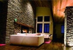 Anti-Acid тонкие гибкие огнестойкие декоративные фо камень стеновые панели