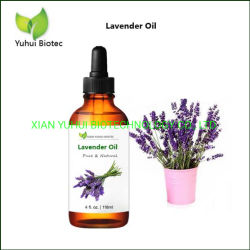 Therapeutisches Grad-Diffuser- (Zerstäuber)Lavendelöl für Aromatherapy