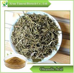 10:1 Rosemary-Extract mit Rosmarinic Acid