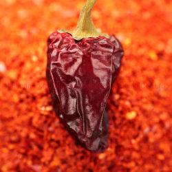 precio de fábrica roja seca pimentón dulce pimentón en diferentes especificaciones asta