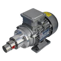 Pompe à engrenages à entraînement magnétique à l'abrasion de la pompe de transmission, sans l'impulsion zéro fuite et résistance à la corrosion M S570.07Y0.18kw2p