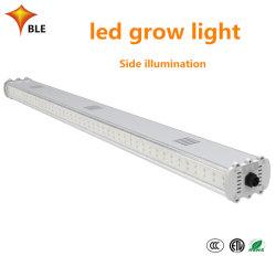 Voyant LED de serre à bon marché croître 90W plante croissent Barre d'éclairage à LED