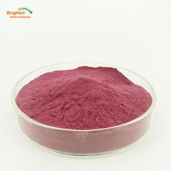 100% natural en polvo Extracto de Blackberry