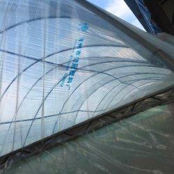 시들링 그린 하우스 폴리카보네이트 플라스틱 필름은 토양 pH를 보호합니다