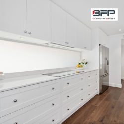 Грациозные вибрационное сито гостиной белый матовый лак кухонным шкафом