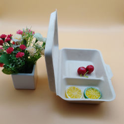 Zuckerrohr-Bagasse-Mittagessen-Kasten des 2 Fach-Verpacken- der LebensmittelwegwerfEco freundlicher