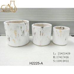 Hot Sale Indoor 8 pouce céramique Plant pot avec couleur d'or