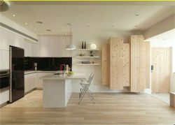 Avec la pendaison des armoires de cuisine et le plancher de la conception pour mobilier de maison