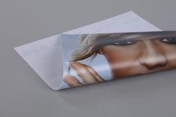 L'impression extérieure en PVC de support matériel de publicité Lona Frontlit bannière Flex