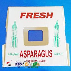 PP Conseil creux et Boîte de fruits en plastique ondulé