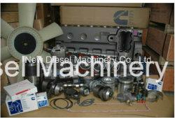 Genuin запасные части для дизельных двигателей (4BT, 6BT, 6CT, НАПП855, КТА19, КТА38, КТА50)