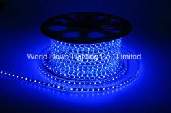 110V 220V Seil-Licht der hohen Helligkeits-LED für blaue Farben-Farbe