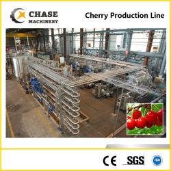 Jus de fruits de la passion de haute qualité et de l'extraction de la machine de traitement de pâte