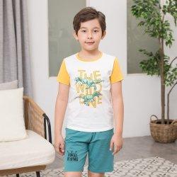 Modèle de dinosaure garçon Ensemble de vêtements enfants Vêtements d'été