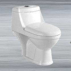 Toilette de toilette de lavage Lash Down Sante Ware sanitaire salle de bains de petite taille céramique Toilettes