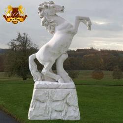 De In het groot Natuurlijke Witte Marmeren Steen die van de fabriek het Levensgrote Marmeren Standbeeld van het Paard snijden