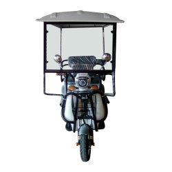 48V500W het kleine Voertuig Met drie wielen van de Riksja van de Passagier Elektrische voor Verkoop