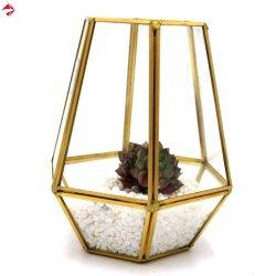 Геометрические внутри окна дисплея сочные контейнер миниатюрный волшебная Garden Home подчеркнуть свою индивидуальность дизайна