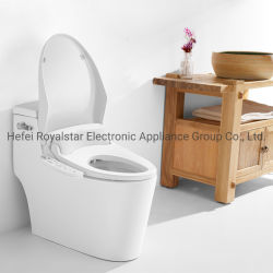 Siège de toilette Bulle de tampon de rincer le chauffage de siège de séchage à air chaud femelle Bidet électrique de nettoyage