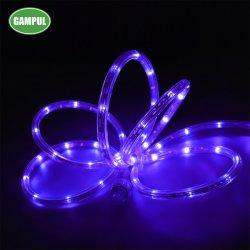 Il colore cinese di RGB della fabbrica che cambia l'abitudine dell'indicatore luminoso della corda di SMD LED ha tagliato per la casa, il natale, l'illuminazione della decorazione del partito