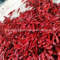 乾燥するトウガラシの赤い唐辛子