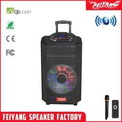 12 pouces Temeisheng Feiyang chariot en bois étape micro sans fil haut-parleur avec BIS WPC Qx1215