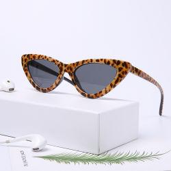 Les femmes à la mode rétro Cat Eye PC des lunettes de soleil polarisées Lunettes de soleil de l'objectif
