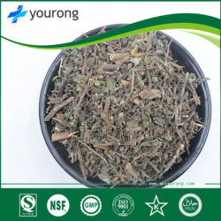 Herba Ecliptae извлечения, традиционной китайской медицины, колодка коричневого цвета Порошок
