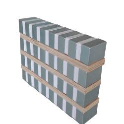 De Magneten van het neodymium voor Magnetische Seperator
