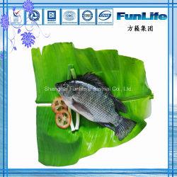 La tilapia OEM Ronda todo el pescado congelado mariscos