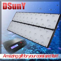 Wettbewerbsfähige programmierbare LED-Aquarienleuchte mit Mondzyklus bei Sonnenuntergang Für Aquarium Fish Tank