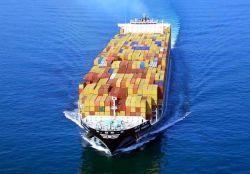 الشحن البحري البحري من شينزين/هونغ كونغ/شنغهاي/نينغبو/تيانجين إلى بيلاوان/جاكارتا/سورابايا/دوماي