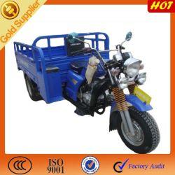 Nuovo 3-Wheel Trike Chopper