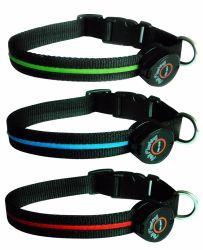 Clignotement du voyant lumineux de gros collier lumineux LED colorées chien colliers Collier pour chien pet